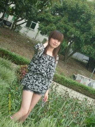 avcao_hanxiucao